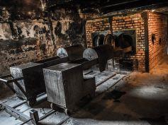 Giorno della Memoria, Furlan, mai dimenticare la tragedia dell'Olocausto